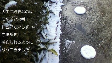 まるい雪.jpg