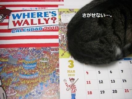 ウォーリー3.jpg