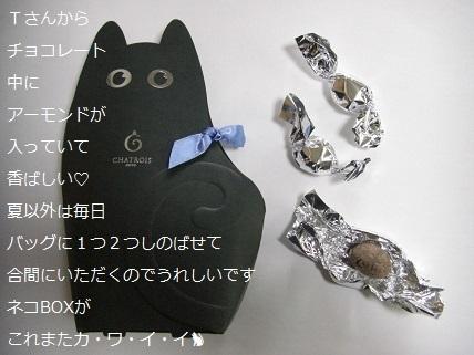 ショコラ・ド・ティラミス.jpg