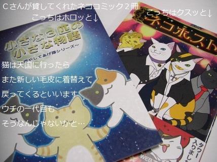 ネココミック.jpg