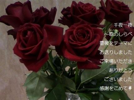 千一薔薇.jpg