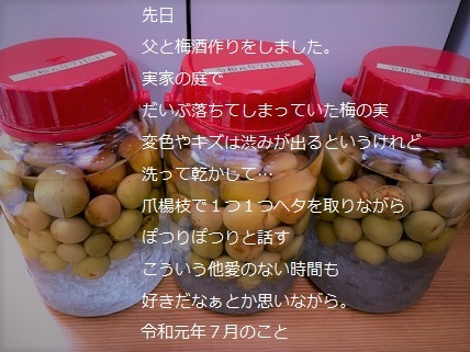 梅酒作り.jpg