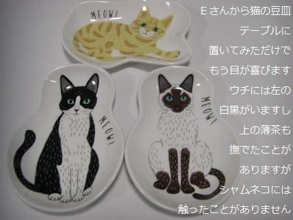 猫の豆皿.jpg