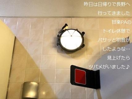 甘楽PA.jpg