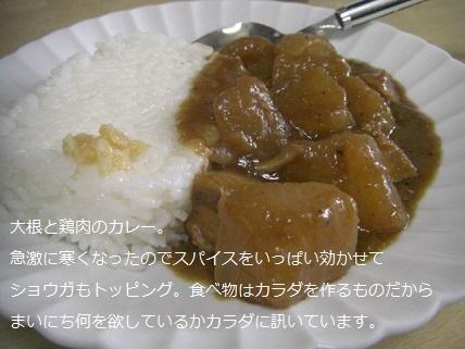 鶏肉のカレー.jpg
