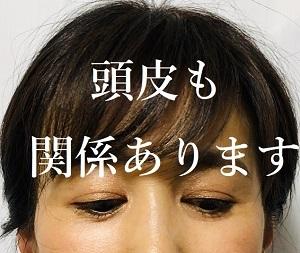 IMG_0783touhi 300×253.jpg